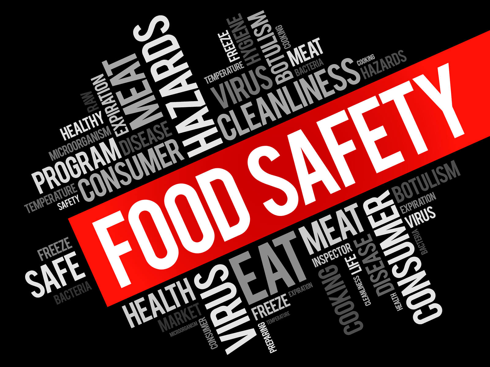 food safety word cloud collage manex consulting
